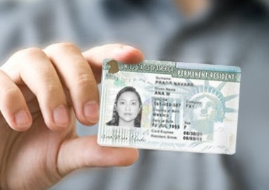 permanent resident card renewal application guide